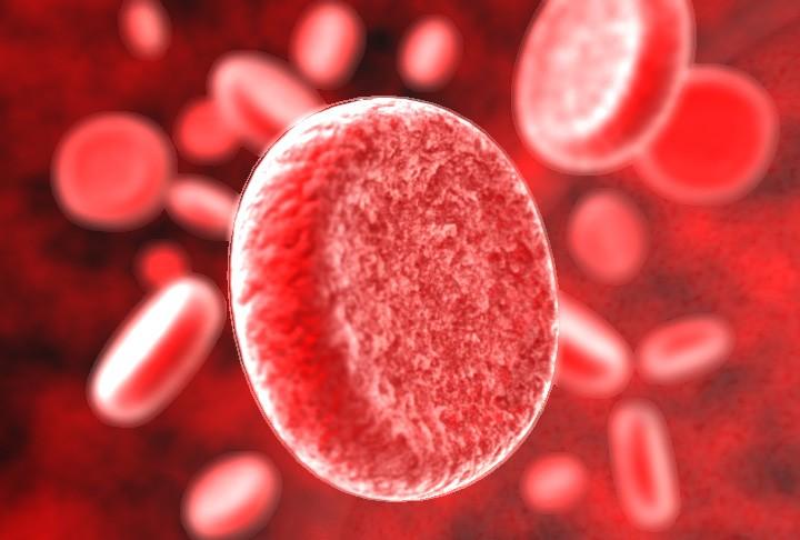 Сыворотка Крови